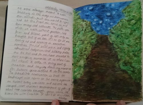 Tracey Wiffen's journal