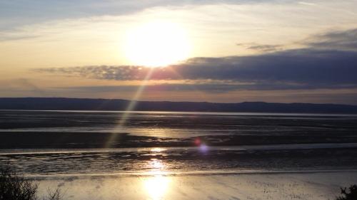 The shoreline shines