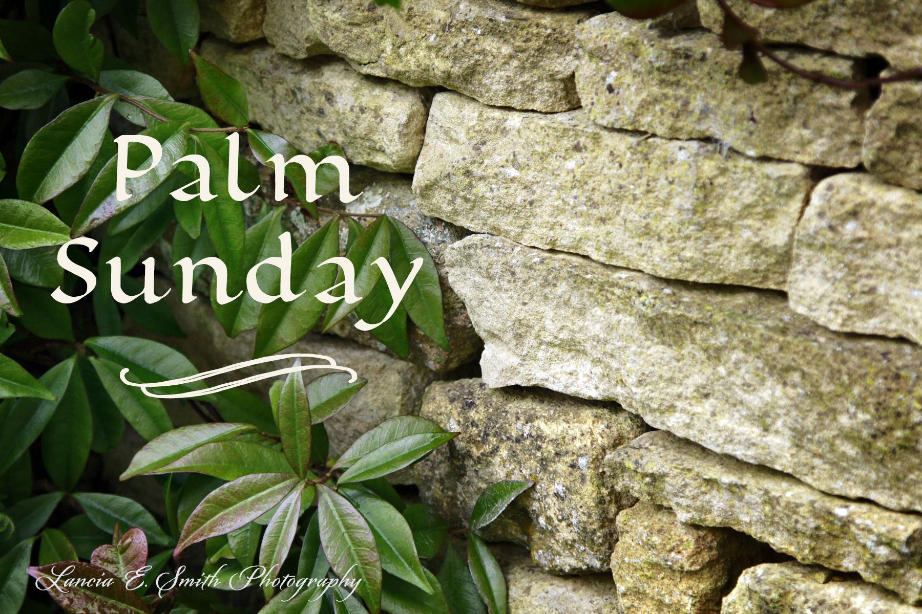 palm sunday - photo #10