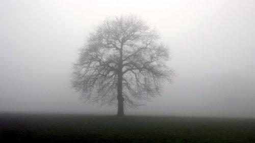 These bleak and freezing seasons